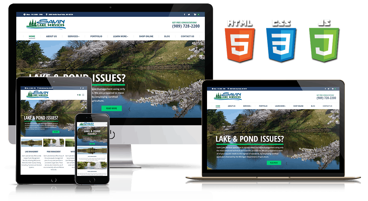 Savin Lake - Web Design Mockup